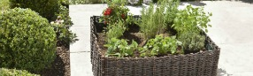 Les carrs potagers