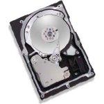 Achat Disque dur interne Maxtor Atlas 15K II - 36.7 Go 15000 RPM 8 Mo Ultra320 SCSI 80 broches (bulk)
