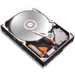 Achat Disque dur interne Maxtor MaXLine III 300 Go 7200 RPM 16 Mo IDE - version RoHS (bulk)