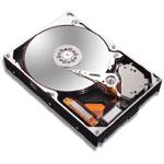 Achat Disque dur interne Maxtor STM3250824AS
