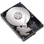 Achat Disque dur interne Maxtor STM3160812AS