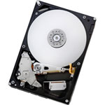Achat Disque dur interne Hitachi Deskstar 7K1000.B - 320 Go