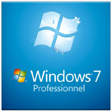microsoft windows 7 professionnel sp1 64 bits oem dvd fqc 08290 achat vente windows. Black Bedroom Furniture Sets. Home Design Ideas