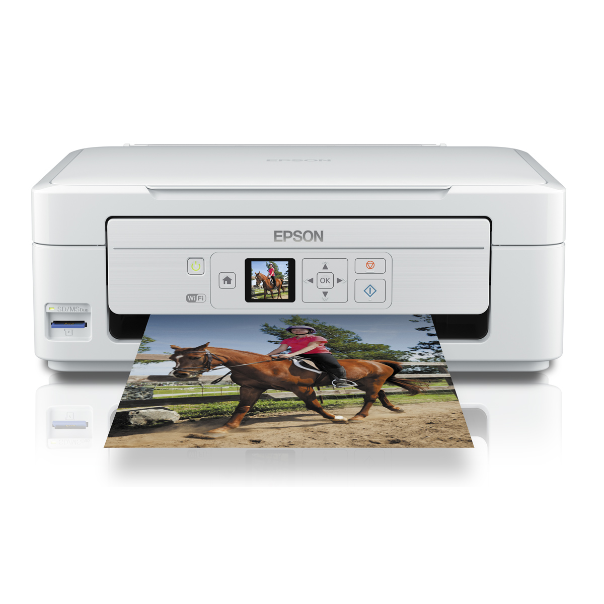 how to connect epson xp 215 printer to wifi