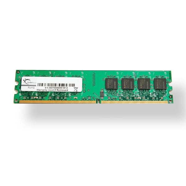 Mémoire PC G.Skill Standard Series 2 Go DDR2 800 MHz G.Skill Standard Series 2 Go DDR2-SDRAM PC2-6400 - F2-6400CL5S-2GBNT (garantie 10 ans par G.Skill)
