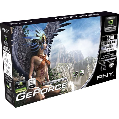 Carte graphique PNY GeForce 6200 PNY GeForce 6200 - 256 Mo TV-Out/DVI - AGP (NVIDIA GeForce 6200)