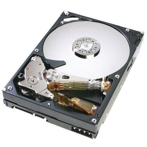 Disque dur interne Hitachi CinemaStar 7K500 400 Go Hitachi CinemaStar 7K500 400 Go 7200 RPM 8 Mo IDE (bulk)