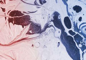 Rose Quartz & Bleu Sérénité