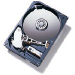 Achat Disque dur interne Hitachi 80 Go 7200 RPM 2 Mo (version Bulk)
