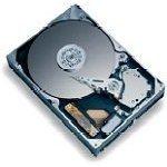 Achat Disque dur interne Maxtor MaXLine II Plus 250 Go 7200 RPM 8 Mo IDE (bulk)