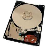 "Achat Disque dur interne Hitachi/IBM 40GNX 5400T 40 Go 2""1/2"