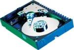 Achat Disque dur interne Western Digital Raptor 74 Go 10000 RPM 8 Mo Serial ATA (bulk)