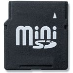 Mini Secure Digital 1 Go