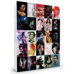 Adobe Creative Suite 6 Master Collection - Etudiant (français, WINDOWS)