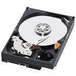 "Disque dur 3.5"" 750 Go 7200 RPM 64 Mo Serial ATA 6Gb/s - WD7500AZEX (bulk)"