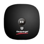 Récepteur de musique et kit mains-libres Bluetooth pour système Hi-Fi ou autoradio