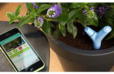 parrot flower power vert accessoires divers smartphone parrot sur. Black Bedroom Furniture Sets. Home Design Ideas