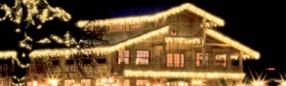 CONSEIL : décorer son jardin à l'approche de Noël