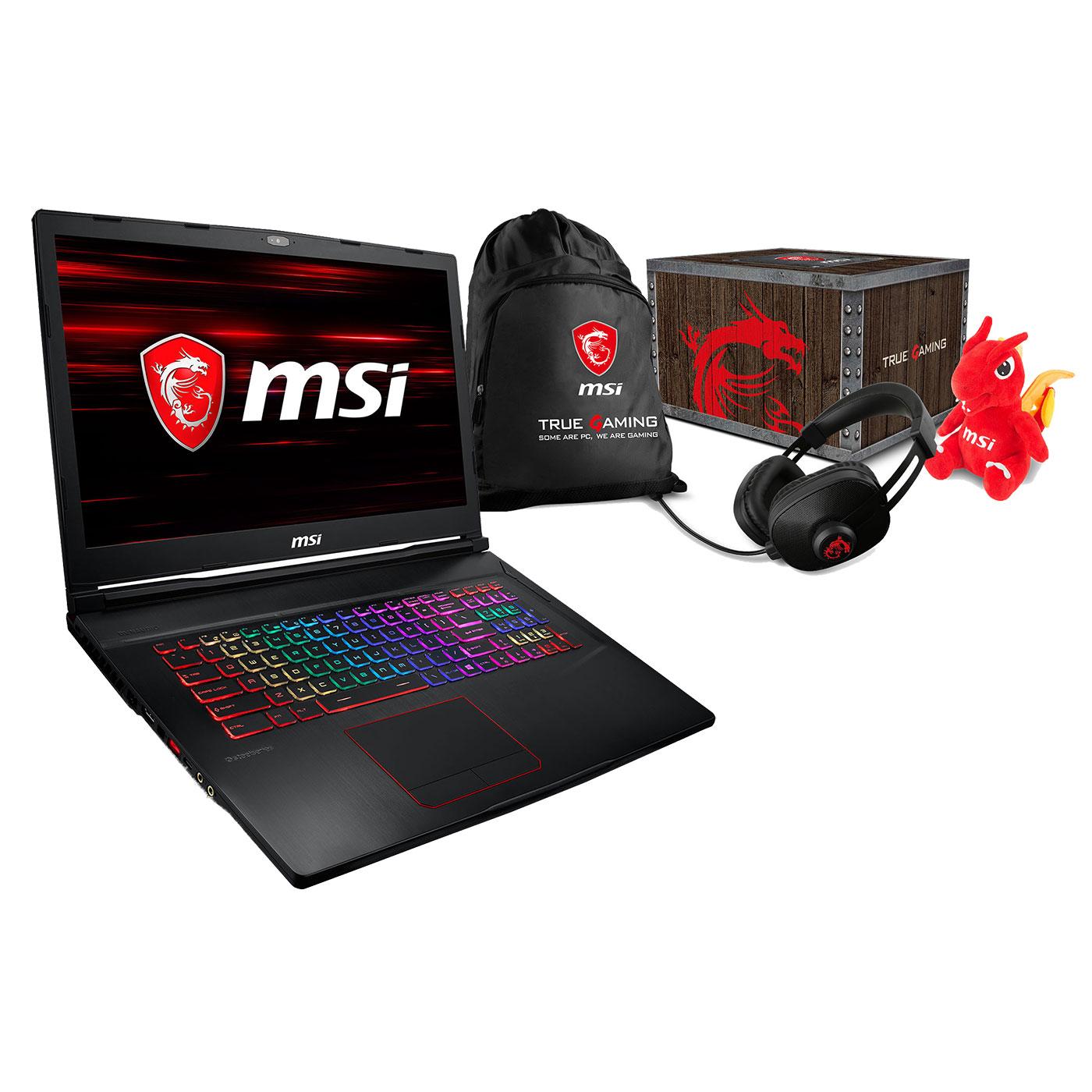 "PC portable MSI GE73 8RF-455XFR Raider RGB + MSI Loot Box - Level 2 OFFERTE ! Intel Core i7-8750H 8 Go SSD 256 Go + HDD 1 To 17.3"" LED Full HD 120 Hz NVIDIA GeForce GTX 1070 8 Go Wi-Fi AC/Bluetooth Webcam FreeDOS (garantie constructeur 2 ans)"