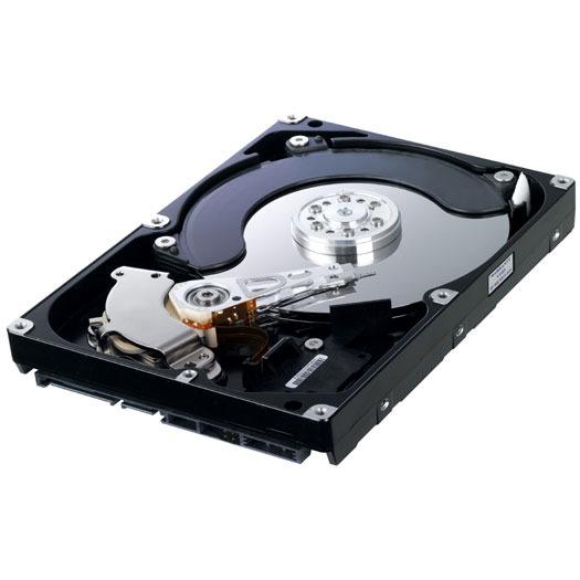 """Disque dur interne Samsung EcoGreen F2 (HD154UI) 1.5 To SATA 3Gb/s  Disque dur 3.5"""" 1.5 To 5400 RPM 32 Mo Serial ATA II (bulk)"""