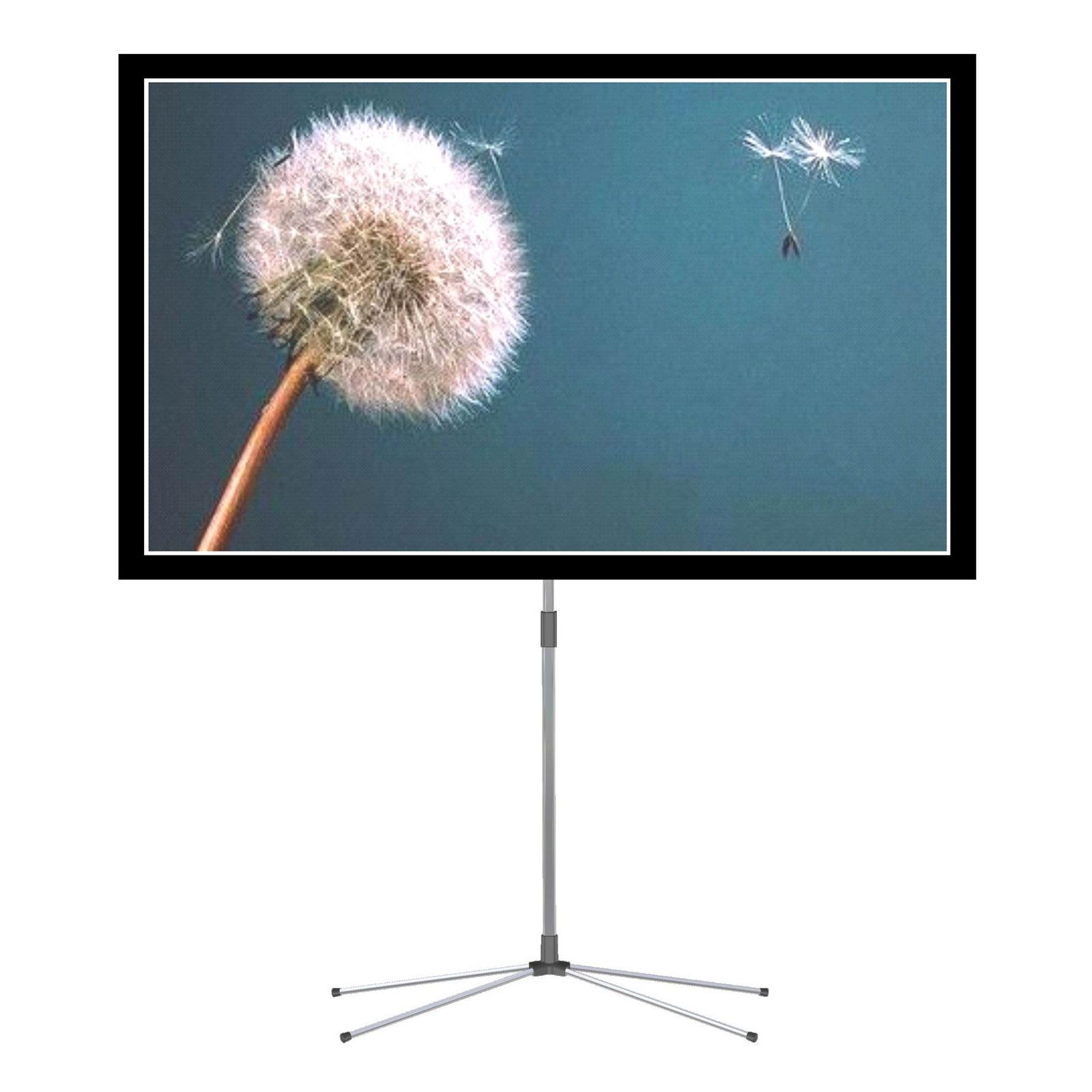 oray isy01b1112200 ecran de projection oray sur. Black Bedroom Furniture Sets. Home Design Ideas