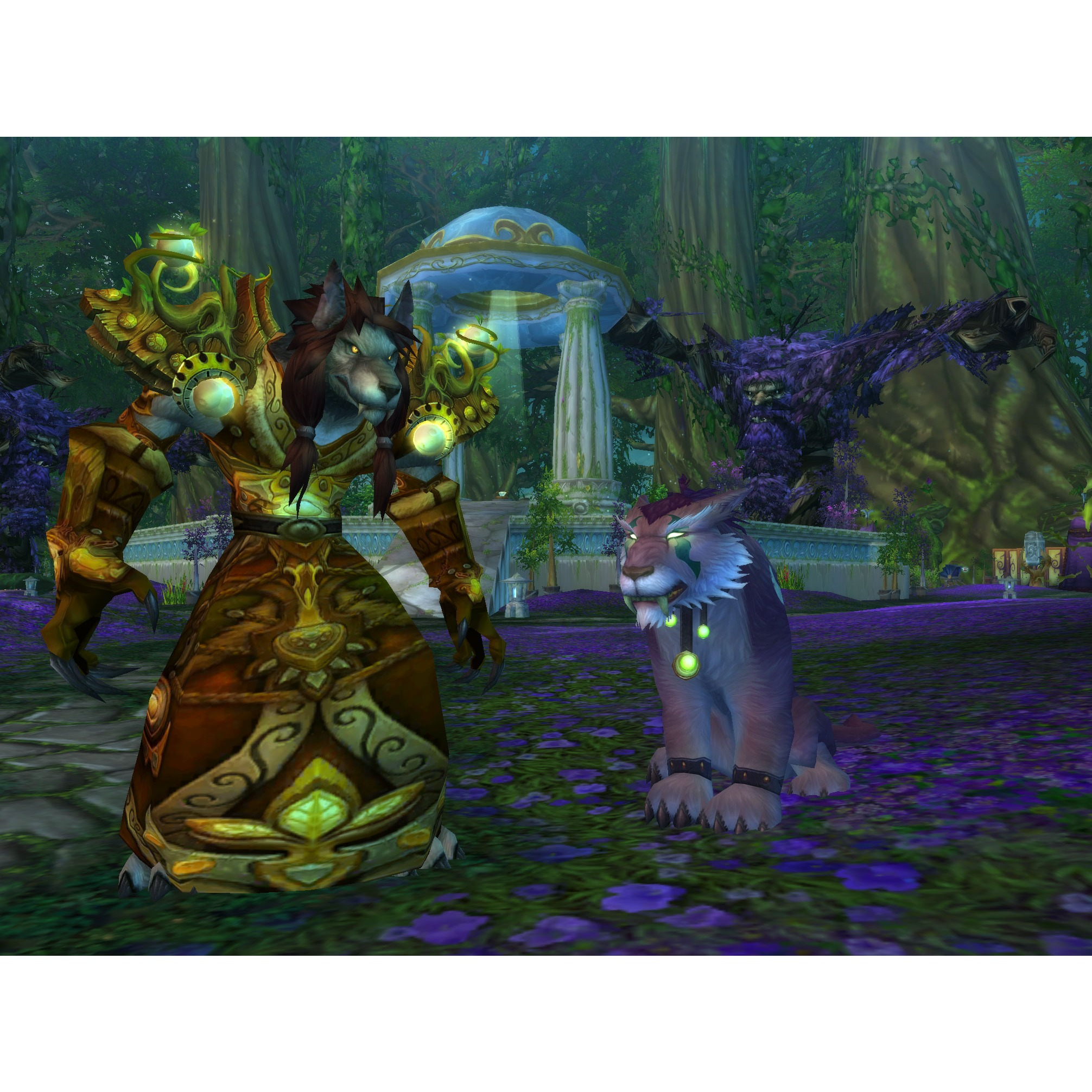World of warcraft cataclysm edition collector pc mac add on pour world of warcraft jeux - World of warcraft sur console ...