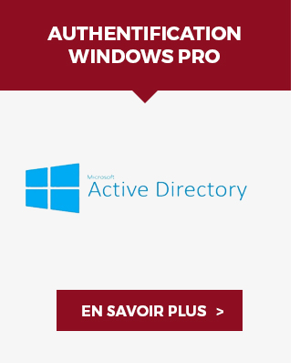 Authentification Windows Pro - Voir ›