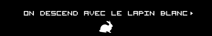 on descend avec le lapin blanc