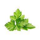 Click and Grow Recharge Triple De Coriandre Pour Smart Garden CLG_SG3_CORIAN