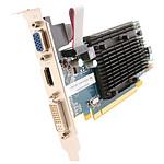 Sapphire Radeon HD 5450 1 Go DDR3