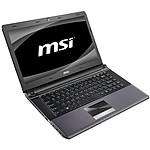 MSI X460DX-289