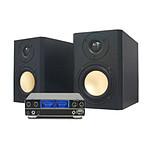 Scythe Kro Craft Speaker  + Kama Bay AMP 2000 Rev. B