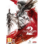 Guild Wars 2  : Edition Standard (PC)