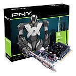 PNY GeForce GT 610 1024MB (GF610GT1GESB)