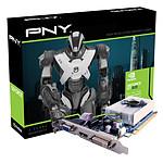 PNY GeForce GT 620 1 GB (GF620GT1GESB)