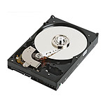 WD RE 500 Go
