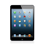 Apple iPad mini Wi-Fi + Cellular 16 Go Noir