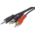Cable de audio Jack 3,5 mm estéreo macho / 2 RCA machos (5 metros)