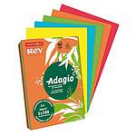 Adagio Ramette de papier 500 feuilles A4 80g coloris Coloris Intenses assortis