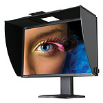 """NEC 24.1"""" LED - SpectraView Reference 242"""