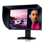 """NEC 30"""" LED - SpectraView Reference 302"""