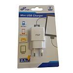 FSP Mini Chargeur secteur USB Blanc