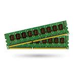 Synology 4 Go (2 x 2 Go) DDR3 ECC 1333 MHz CL9
