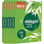Adagio Lot de 5 ramettes de papier 500 feuilles A4 80g coloris Vert Intense