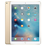 Apple iPad Pro 32 Go Wi-Fi Or