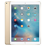 Apple iPad Pro 128 Go Wi-Fi + Cellular Or