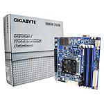 Gigabyte MB10-DS1