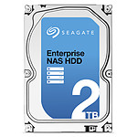 Seagate Enterprise NAS HDD 2 To