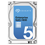 Seagate Enterprise NAS HDD 5 To