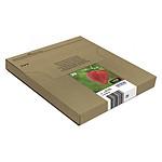 Epson 29 Multipack Easymail